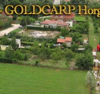 Goldcarp See - Karpfenfischen in Ungarn 1