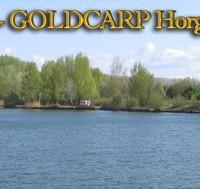 Goldcarp See - Karpfenfischen in Ungarn 2